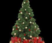 Wyniki Konkursu Świątecznego