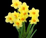 Gminy Konkurs Palm Wielkanocnych